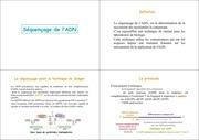 2emecours2003 4