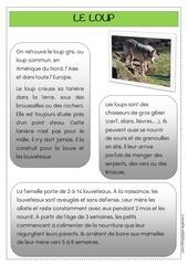 Fichier PDF le loup