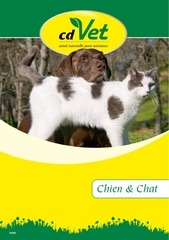 catalogue chien et chat