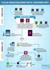 dps infographic fr