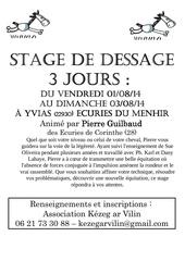 Fichier PDF stage pierre aout