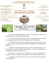 Fichier PDF mildiou de la vigne