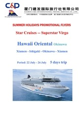 summer holidays promotional flyers