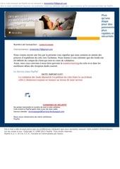 Fichier PDF information du service paypal