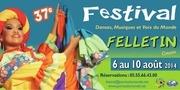 depliant festival felletin 2014 facebook