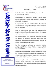 Fichier PDF communique de presse 18 juin 2014
