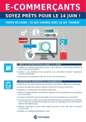fiche e commerce vf 062014