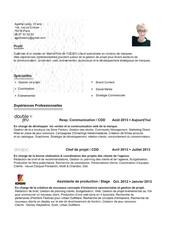 Fichier PDF cv aleroy