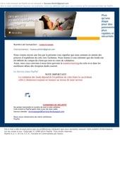Fichier PDF information du service paypal 1