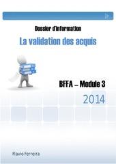 bffa m3 dossier d information flavio ferreira