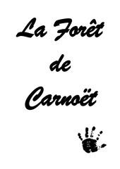 Fichier PDF carnet recap cache foret clohar