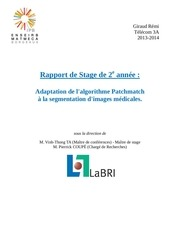 rapport stage 2a rgiraud 2012 2013