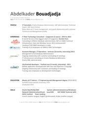 Fichier PDF cv abelkaderbouadjadja