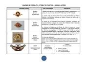 Fichier PDF insignes sp