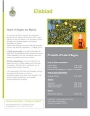 Fichier PDF flyer francais