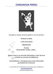 Fichier PDF modele d avis de recherche