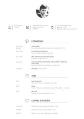 Fichier PDF erwan peron cv