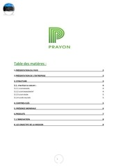 rapport mission commerciale 2012