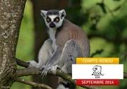 compte rendu spaycific zoo 2014