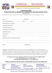 Fichier PDF dossier candidature carnaval mulhouse 2015