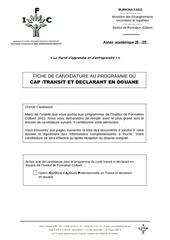 dossier de candidature cap transit et declarant en douane 84