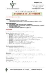 programme master pro 1 et 2 strategie de lentreprise 143