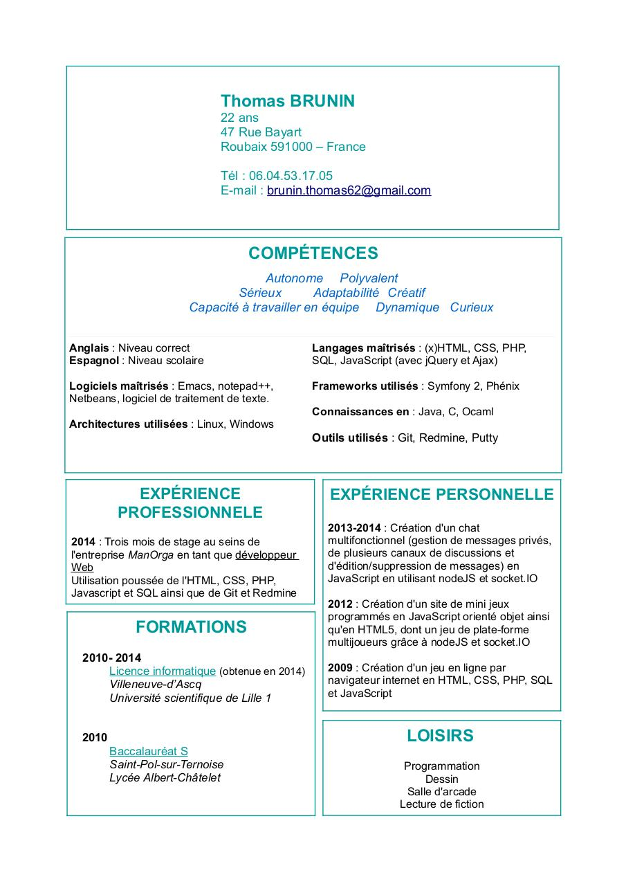 cv developpeur web 2