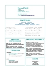 cv developpeur web 2