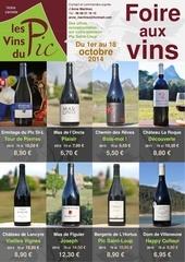 foire aux vins octobre 2014