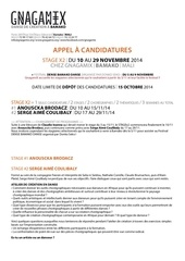 appel candidature gnagamix brodacz coulibaly nov2014