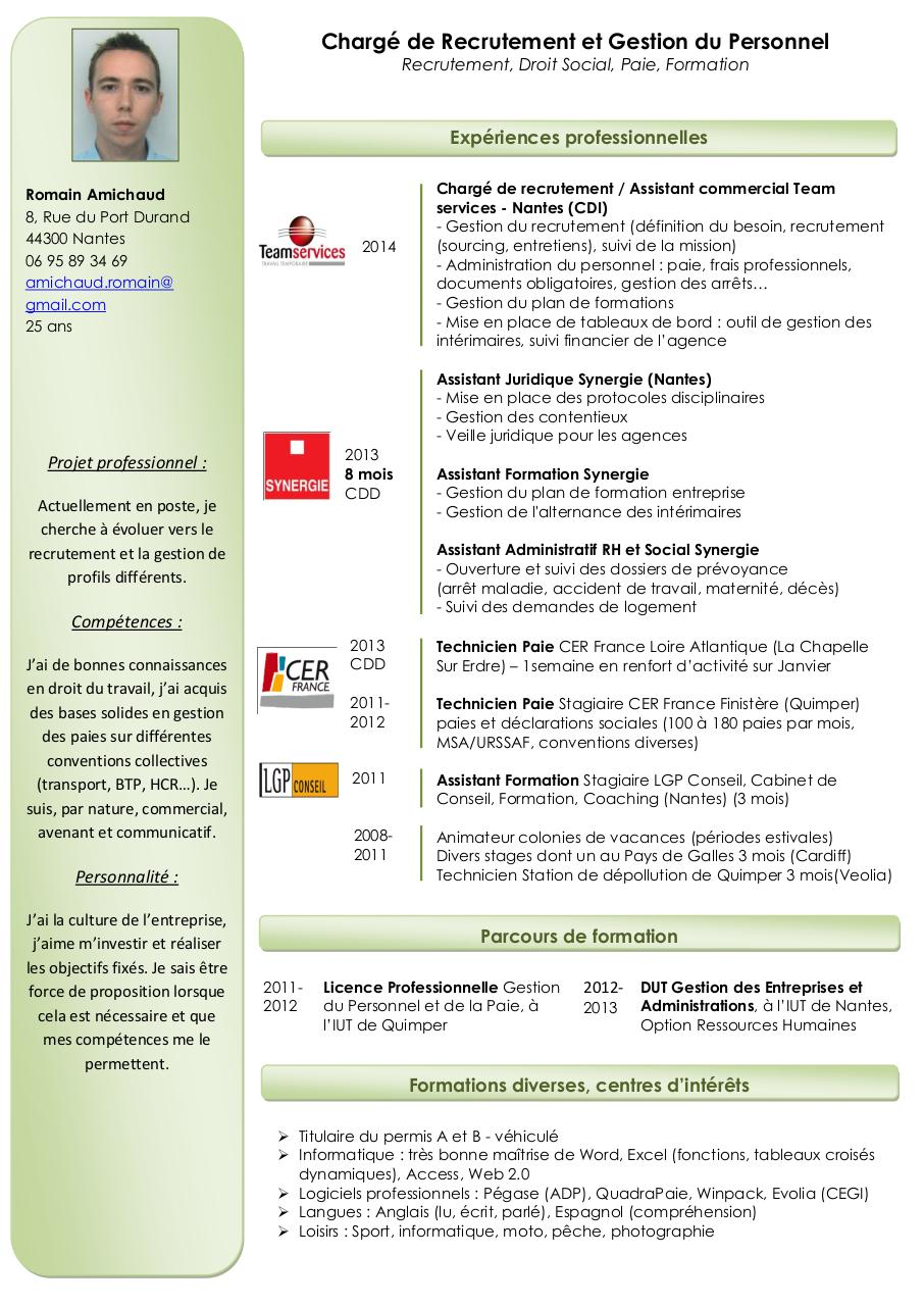 cv romain amichaud pdf par team-services