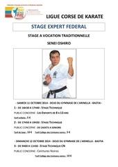 plaquette type stage traditionnel ochiro 10 2014