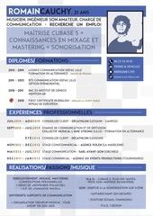 Fichier PDF cv romain cauchy 2014 son