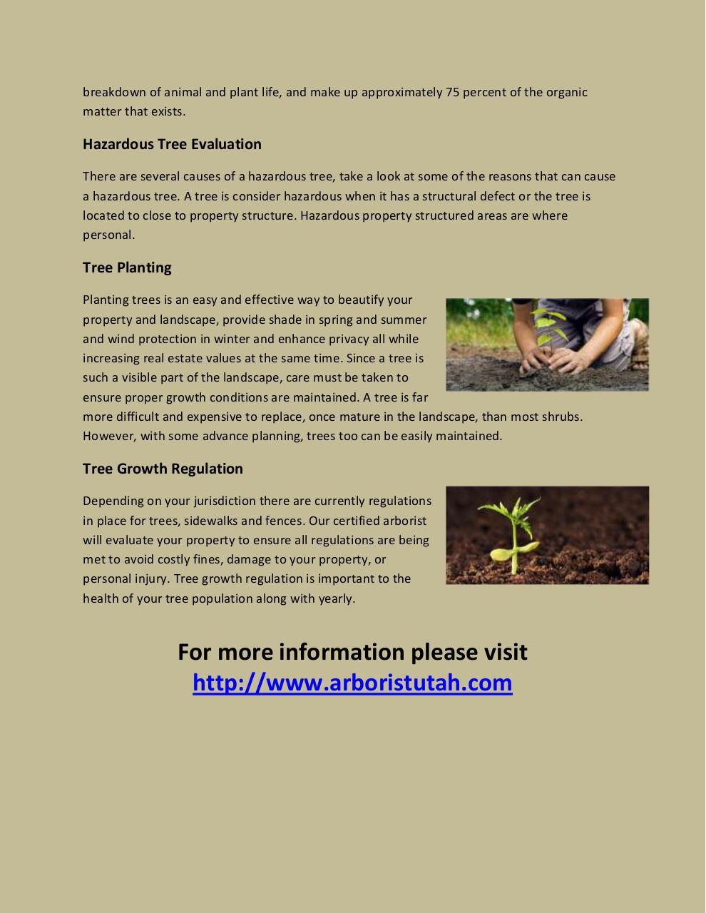 organic material in lake superior pdf