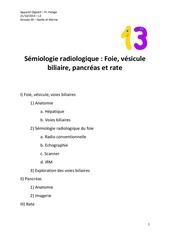 Fichier PDF roneofinalsemio