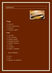 Fichier PDF fiche presentation institut
