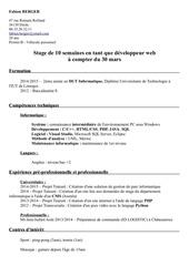Fichier PDF cv berger fabien 1