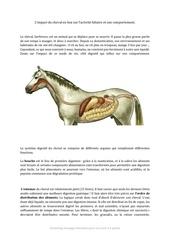 Fichier PDF digestion cheval