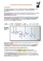 transcription et maturation des arn messagers