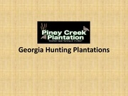 georgia hunting plantations