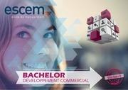 plaquette bachelor developpement commercial