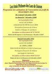 affiche animations telethon 2014