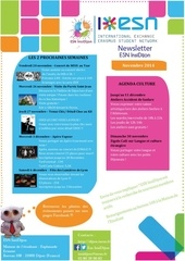 Fichier PDF newsletter novembre esn insidijon