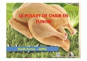 situation du secteur du poulet de chair