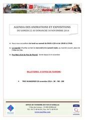 agenda du samedi 22 au dimanche 30 novembre 2014