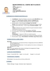 Fichier PDF cv amine ben sliman office 100 1