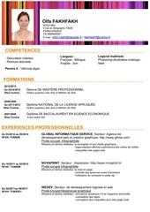 Fichier PDF designer graphique