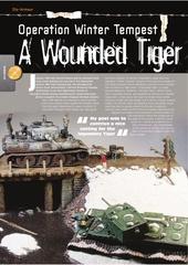 s m m i 2014 tigre vs kv 1