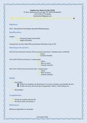 Fichier PDF curiculum vitae 1