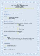 Fichier PDF curiculum vitae